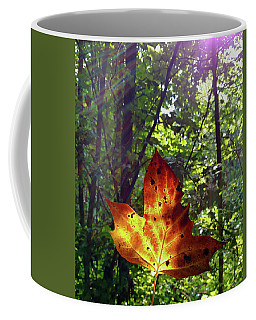 Leaf Aglow Coffee Mug