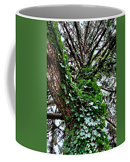 Coffee Mug featuring the photograph Leafy Tree Trunk by Lukas Miller