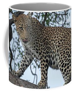 Leopard Anticipation Coffee Mug
