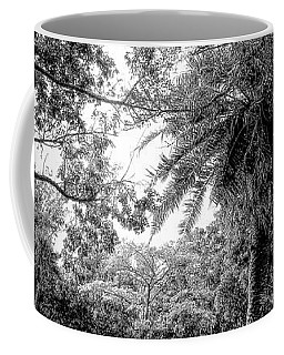 Let The Light In Coffee Mug