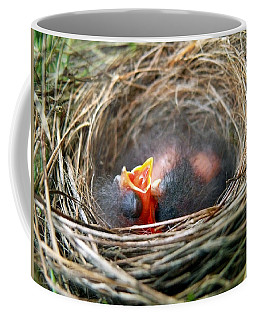 Life In The Nest Coffee Mug
