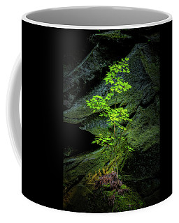 Life Will Find A Way Coffee Mug