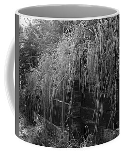 Coffee Mug featuring the photograph Light And Texture by Jeni Gray