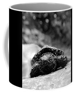 Lil Snapper Coffee Mug