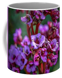 Lilac #h9 Coffee Mug