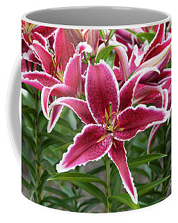 Lilium Red Eyes Coffee Mug