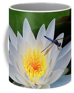 Lily And Dragonfly Coffee Mug