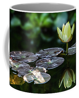 Lily In The Pond Coffee Mug