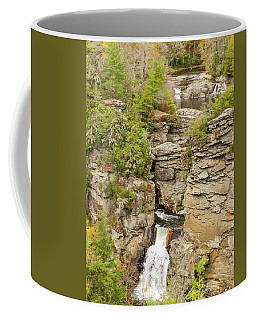 Linville Falls - Vertical Coffee Mug