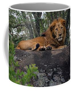 Lion Rocks Coffee Mug