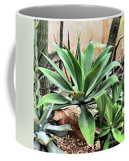 Lion's Tail Agave Coffee Mug