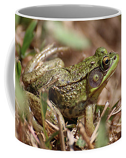 Little Green Frog Coffee Mug