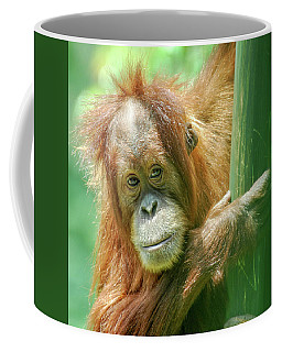 Coffee Mug featuring the photograph Little Red by Howard Bagley