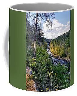 Coffee Mug featuring the photograph Little River Canyon Alabama by Rachel Hannah