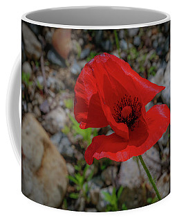Coffee Mug featuring the photograph Lone Red Flower by Lora J Wilson