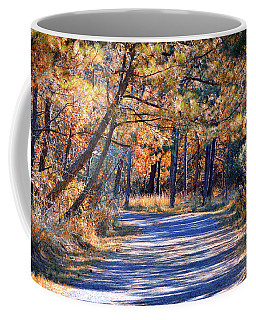 Coffee Mug featuring the photograph Long And Winding Road At Gordon's Pond by Bill Swartwout Fine Art Photography