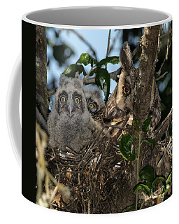 Coffee Mug featuring the photograph Long-eared Owl And Owlets by Mike Long