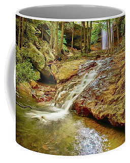 Long Falls Coffee Mug