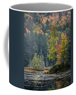 Coffee Mug featuring the photograph Loon Lake by Brad Wenskoski