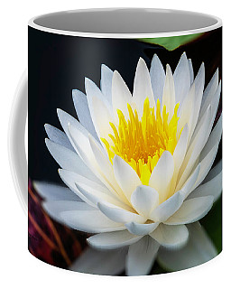 Lotus Gold Coffee Mug