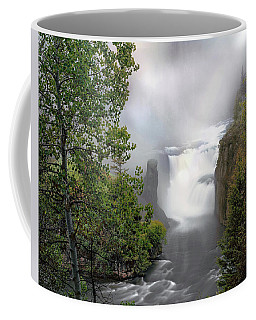 Lower Mesa Falls Coffee Mug