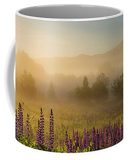 Lupine In The Fog, Sugar Hill, Nh Coffee Mug