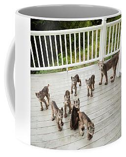 Coffee Mug featuring the photograph Lynx Family Portrait by Tim Newton