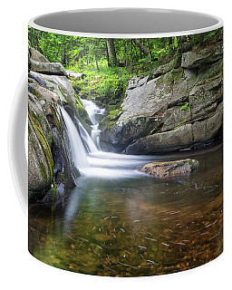 Coffee Mug featuring the photograph Mad River Falls by Nathan Bush