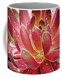 Magical Succulent Coffee Mug