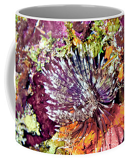 Magnificent Feather Duster Coffee Mug