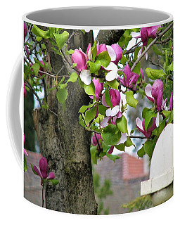 Magnolia Display Coffee Mug