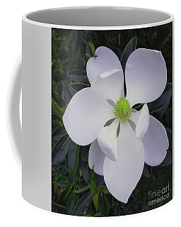 Coffee Mug featuring the painting Magnolia Flower Photo F9718 by Mas Art Studio