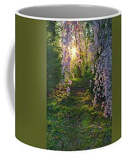 Magnolia Tree Sunset Coffee Mug