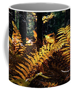 Coffee Mug featuring the photograph Maine Autumn Ferns by Jeff Folger