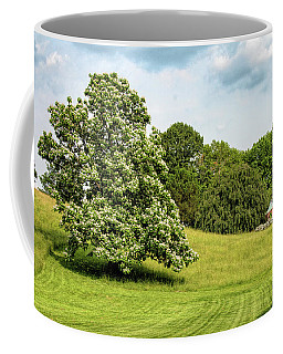 Majestic Catalpa At Winterthur Coffee Mug