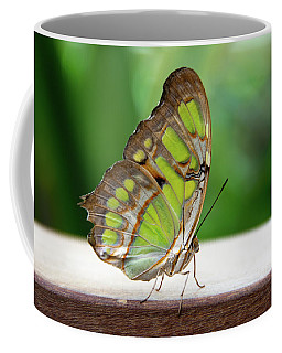 Malachite Butterfly Profile Coffee Mug