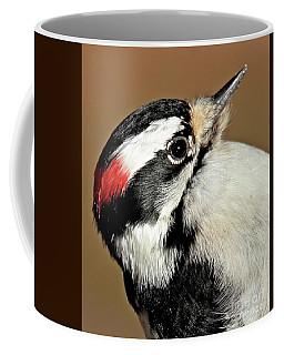 Male Downy Woodpecker Coffee Mug