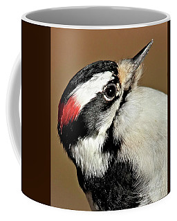 Male Downy Woodpecker Coffee Mug