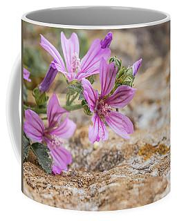 Malva Sylvestris - Spontaneous Flower Of The Tuscan Mountains Coffee Mug