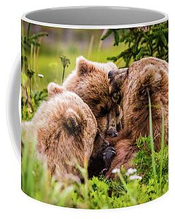 Mama Bear Nursing Her Two Cubs, Lake Clark National Park, Alaska Coffee Mug