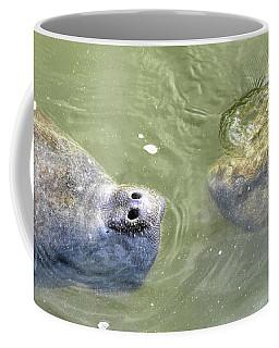 Manatee Love Coffee Mug