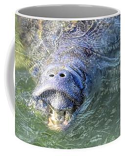 Manatee Smile Coffee Mug