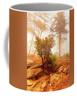 Manzanita In Light Coffee Mug