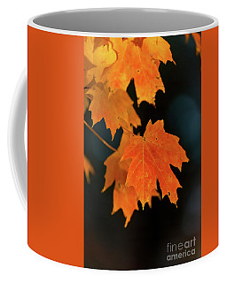 Maple-1 Coffee Mug