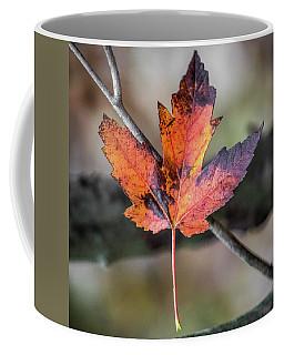 Maple 1 Coffee Mug