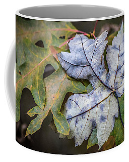 Maple And Oak Coffee Mug