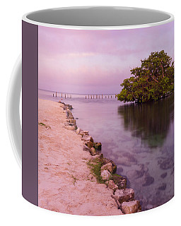 Mayan Sea Reflection 2 Coffee Mug