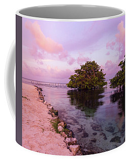 Mayan Sea Reflection Coffee Mug