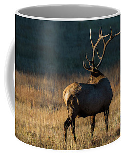 Coffee Mug featuring the photograph ME3 by Joshua Able's Wildlife