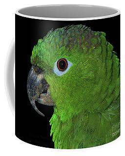 Mealy Amazon Coffee Mug